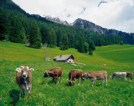 Copyright: Schweiz Tourismus  Signature: Christof Sonderegger