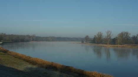 Blick in die Elbeauen flussabwärts